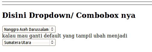 Membuat Drop Down/Combobox di CodeIgniter
