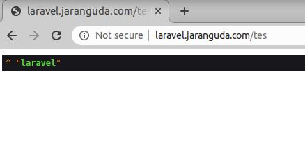 laravel test database