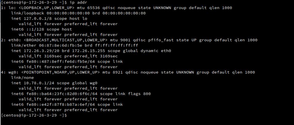 ip addr linux