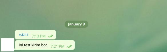 chat dengan bot telegram pertama kali